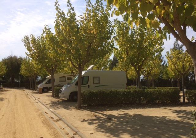 Camping La Aldea1