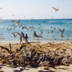 Hemelse stranden